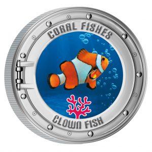 Clown Fisch - bekannt aus Findet Nemo
