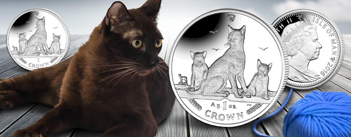 "Isle of Man ""Cats"": 2016 ""Havana-Katze"""