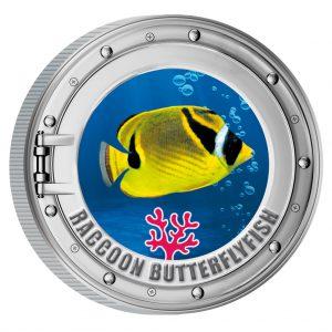 493.0031_korallenfische_raccoonbutterflyfish