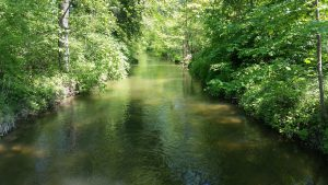 Die Argen, Nähe Kressbronn, Bodenseezufluss
