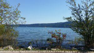 Blick über den See, am Bodensee, Ludwigshafen/Bodman