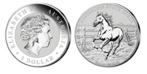 Australien Stockhorse