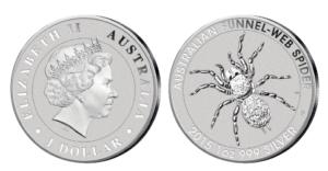 Australien Trichternetzspinne