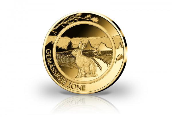 Goldausgabe Gemässigte Zone Hase