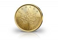 Zusatzbild zu Maple Leaf 1/10 oz Gold 2019 Kanada
