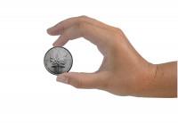 Zusatzbild zu Maple Leaf 1 oz Silber 2019 Kanada veredelt mit Ruthenium