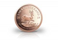 Zusatzbild zu Krügerrand 1/10 oz Gold 2019 Südafrika