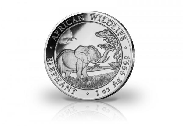 African Wildlife Serie 1 oz Silber 2019 Somalia Elefant